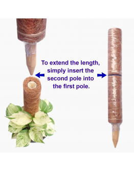 Coir Moss Plant Support Pole Extendable