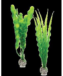 Easy Plant Set Medium Green by biOrb