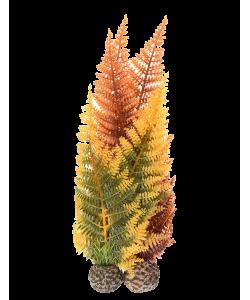 Aquatic Autumn Fern by biOrb