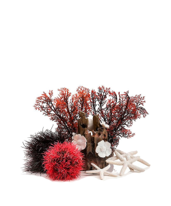 Decor Set 15L Red Forest by biOrb