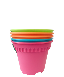 Colourful Pot 5-in-1