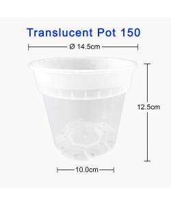 Translucent Clear Pot 150 (145mmØ x 125mmH)