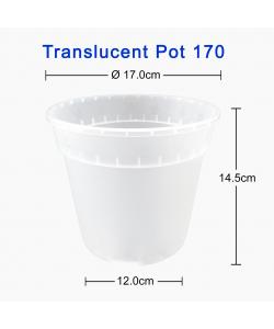 Translucent Pot 170 (170mmØ x 145mmH)