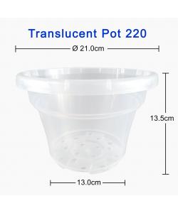 Translucent Pot 220  (210mmØ x 135mmH)
