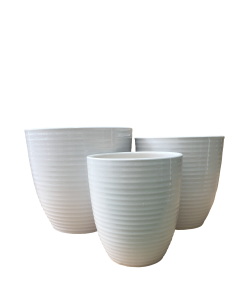 Ceramic 8039 White Line Pot