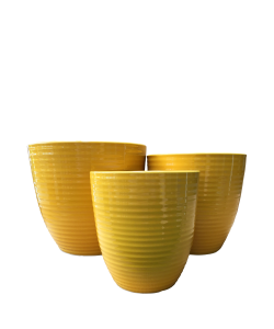 Ceramic 8039 Yellow Line Pot