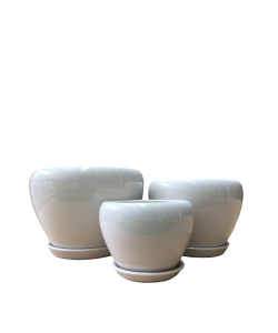 Classic White Bowl Ceramic Pot