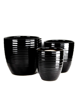 Black Line Ceramic Pot
