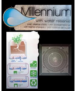 Cubo Millennium 39