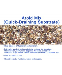 Aroid Mix – Quick Draining Substrate