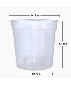 15cm Translucent Clear Pots (14.5cmØ x 12.5cmH)