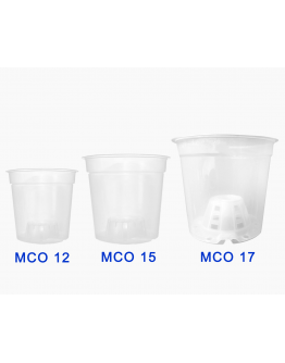 Translucent Clear Pots