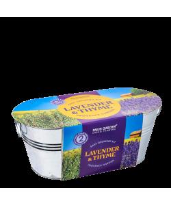 Lavender & Thyme Grow Kit