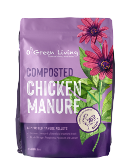 Composted Chicken Manure Pellets 2.5L Bag by O' Green Living