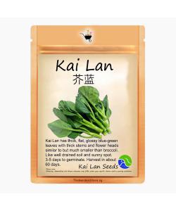 Kai Lan Seeds by BlueAcres