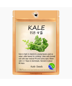 Kale Seeds by BlueAcres