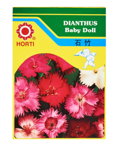 Dianthus Baby Doll Seeds By HORTI