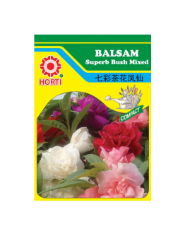 Balsam Superb Bush Mixed 七彩茶凤仙花 Seeds By HORTI