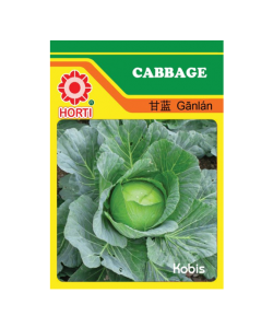 Cabbage 甘蓝菜 Seeds By HORTI