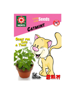 Catmint Seeds by HORTI