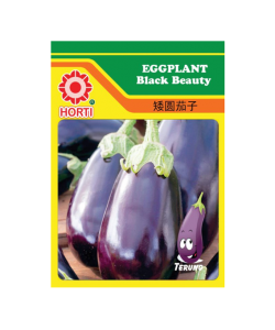 Eggplant Black Beauty Seeds by HORTI