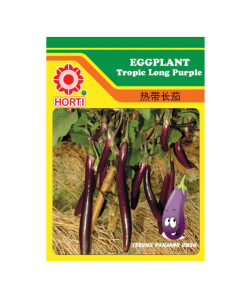 Eggplants Tropic Long Purple Seeds by HORTI