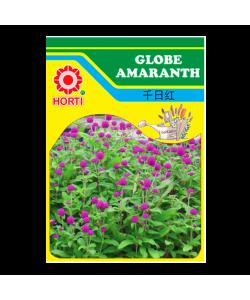 Globe Amaranth 千日红 Seeds By HORTI