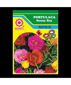 Portulaca Sunny Boy Seeds By HORTI