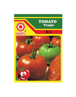 Tomato Tropic Seeds By HORTI