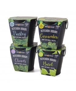 Kitchen Herbs Black Matt Series
