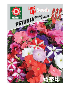 Petunia Colour Parade 矮牵牛Seeds By HORTI