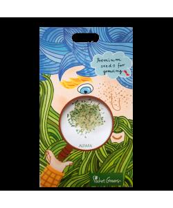 Alfalfa Premium Seeds