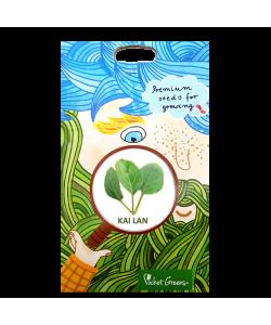 Kai Lan Premium Seeds