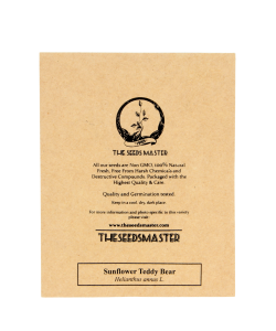 Sunflower 'Teddy Bear' By The Seeds Master