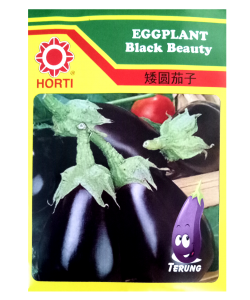 Eggplant Seeds by HORTI