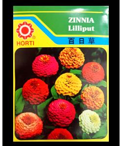 Zinnia Lilliput Seeds by HORTI